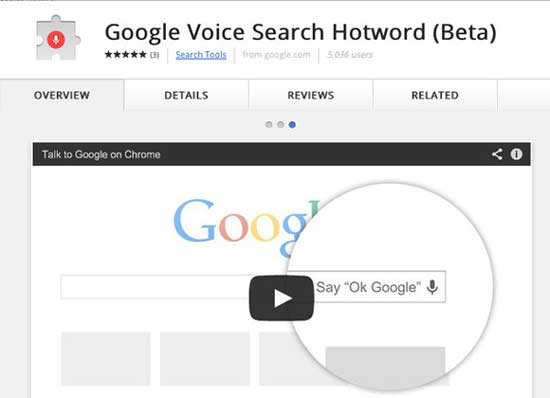 Google automatic voice search