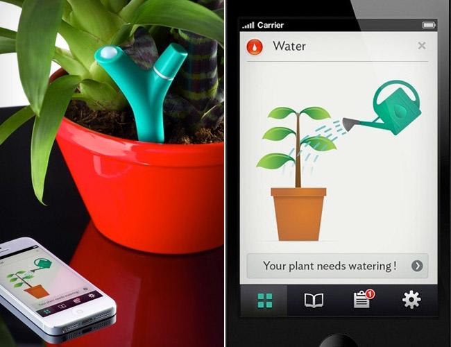 parrot-flower-power-app-stake-gear-patrol