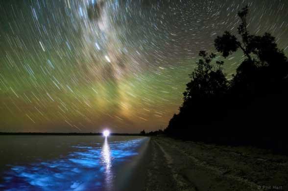 ستاره های دنباله دار و یک شب ستاره ای زیبا در کنار ساحل