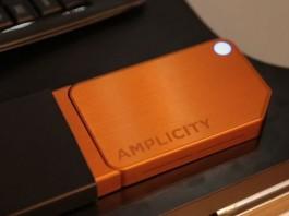 Amplicity