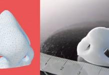 چاپگر سه بعدی , چاپ بینی , بینی مصنوعی