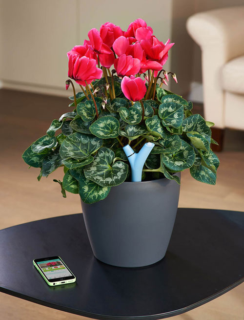 Parrot Flower Power : گجتی برای گیاهان