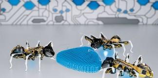 مورچه های رباتیک شرکت فستو - زوم تک