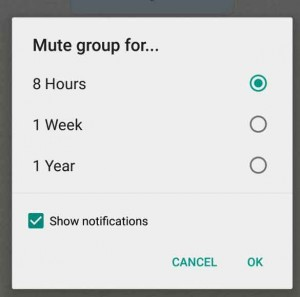 whatsapp_mute_chat