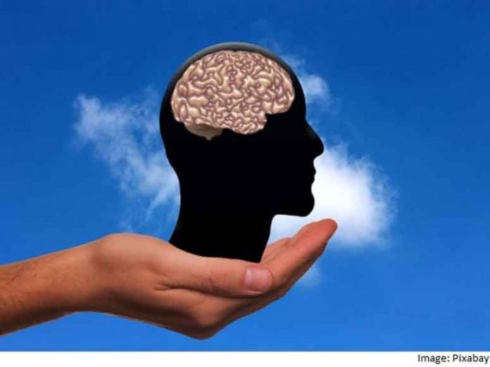 مغز پرینت شده به زودی به واقعیت تبدیل می شود