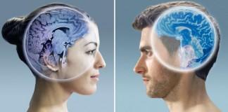مغز زنان دیرتر از مغز مردان پیر می شود / نتایج یافته های جدید