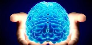 شما از چند درصد مغزتان استفاده می کنید ؟