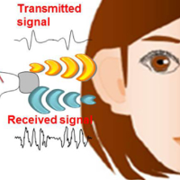 تایید هویت کاربر از طریق بررسی نحوه ی حرکت امواج صوتی در گوش