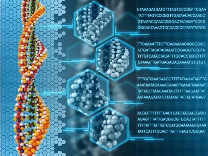 ذخیره ی اطلاعات دیجیتال بر روی DNA انسان