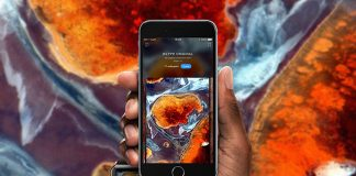 the-7-best-wallpaper-apps-for-your-phone