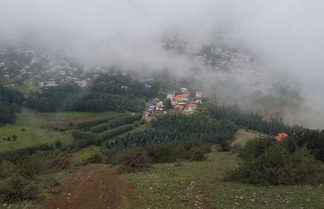 سامسونگ بیش از صد هزارمتر مربع زمین را در شمال ایران درختکاری میکند