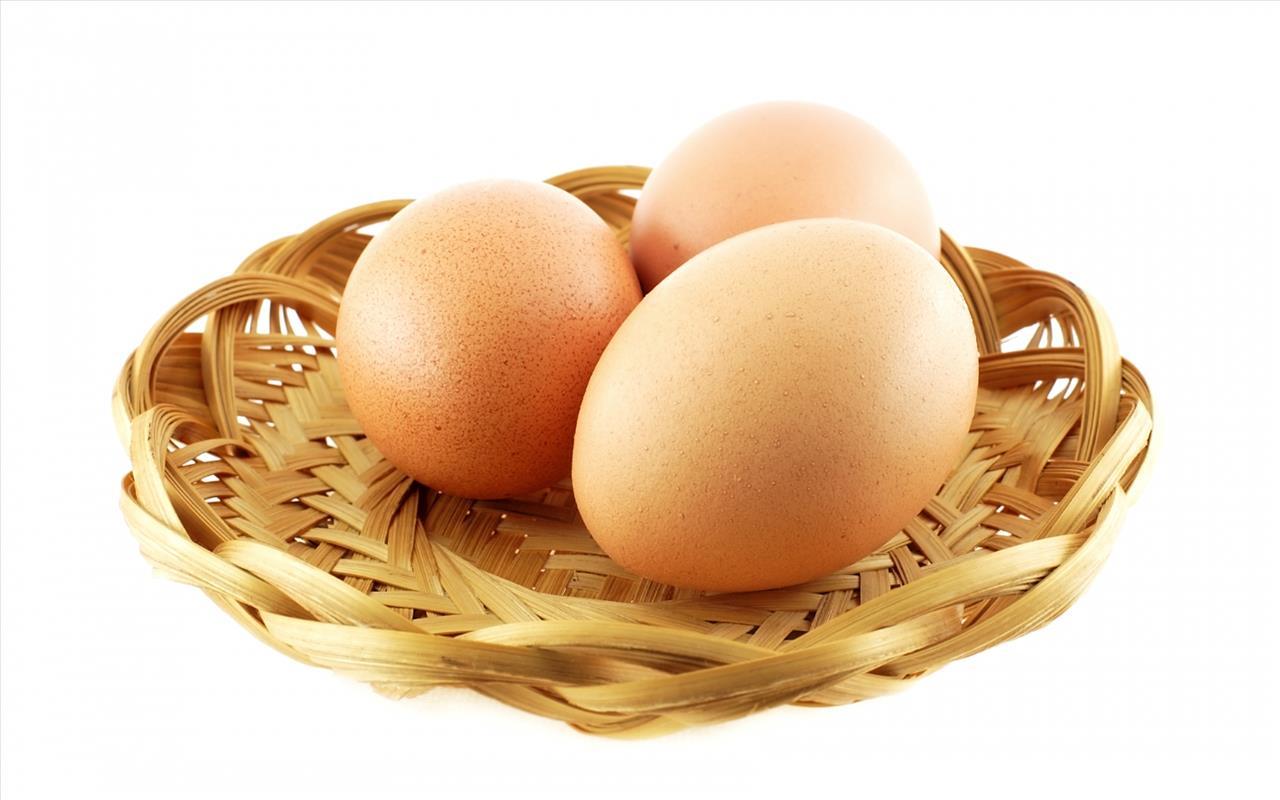 تخم مرغ منبع پروتئین برای بدن