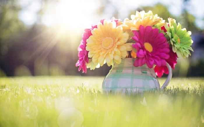 عکس های فصل بهار برای پروفایل