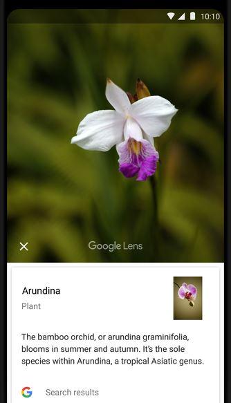 کارهای منحصر به فردی که میتوانید با اپلیکیشن Google Lens انجام دهید.2