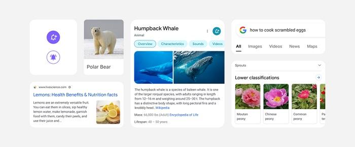 ظاهر جدید گوگل سرچ برای گوشی های هوشمند