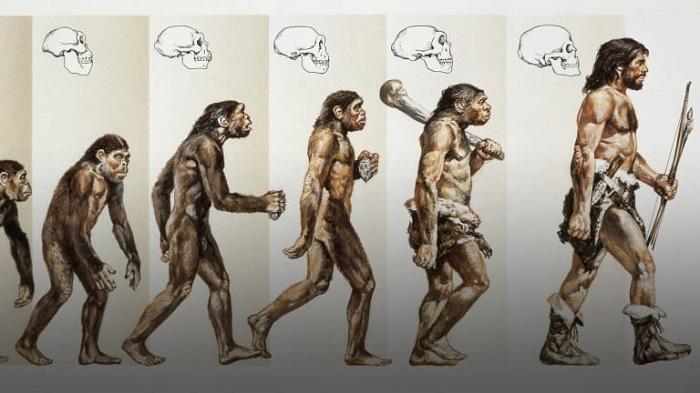 چه تعداد از انسان های اولیه در زمین سکونت داشتند؟